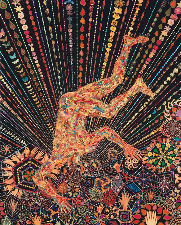 fred-tomaselli5